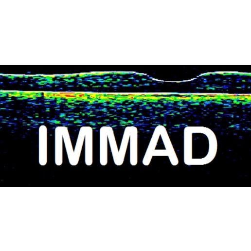 IMMAD Logo